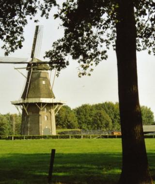 de Vilsterse molen