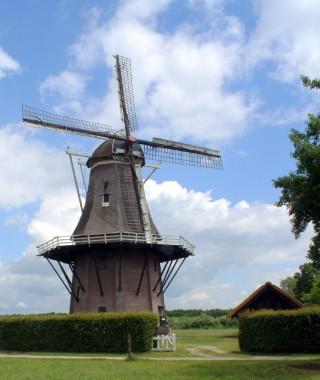 Hardenberg molen de Star